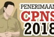 berita-pendaftaran-cpns-2018_20180908_095753